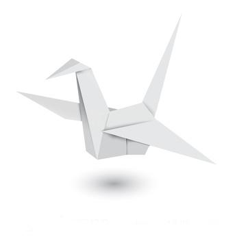 Toulouse: la Mairie souhaite contrôler la prolifération des pigeons